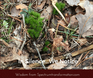 In silence we notice2