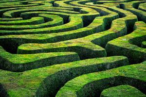 hedge_maze