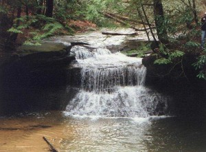 RRG - Rock Bridge Trail