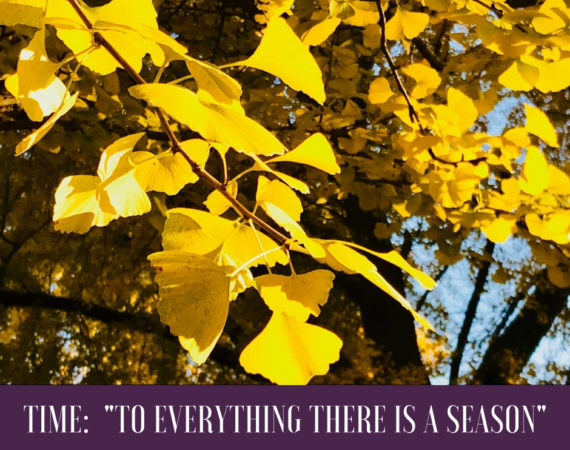 """Time: """"To Everything There Is A Season"""""""